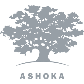 Ashoka  grey