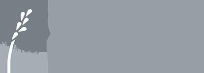 Savory  grey